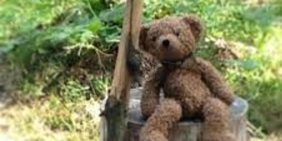 Teddy Bear Hunt