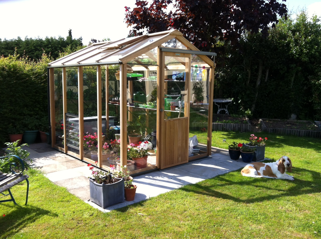 Alton Greenhouse Bespoke