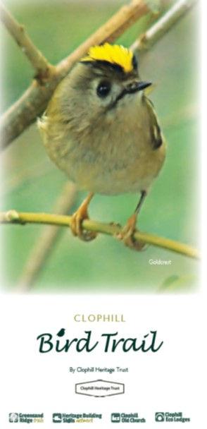 Bird Trail Front.jpg