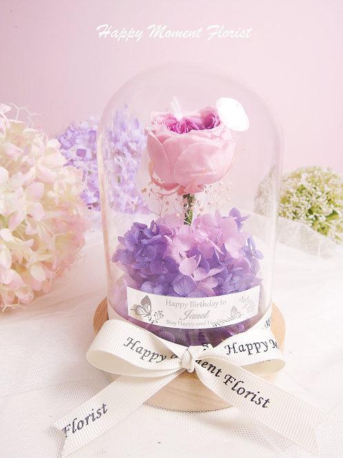 迷你紫色庭園玫瑰保鮮花