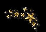 Lucky Star Fridge