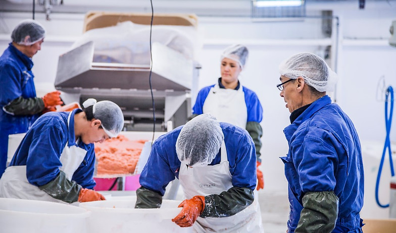SEAFOOD SUPPLIERS   Crawley   SEAFOOD SUPPLIERS LLC