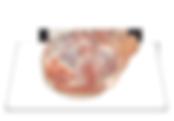 12-paleta-com-osso-raquete.png