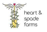 ANNIKA'S DESIGN - HEART & SPADE.jpg