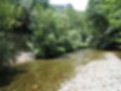 riverbeach 3.png