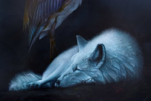 """Secludere"" fox detail"