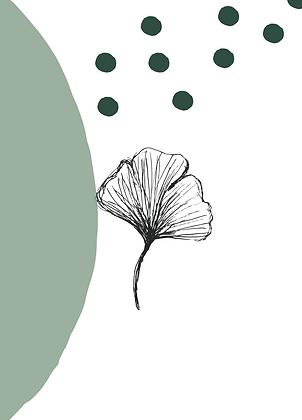 Illustratie ginkgo