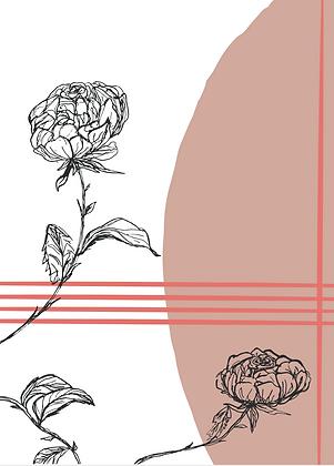 Illustratie pink roses