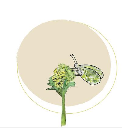Illustratie flower with butterfly