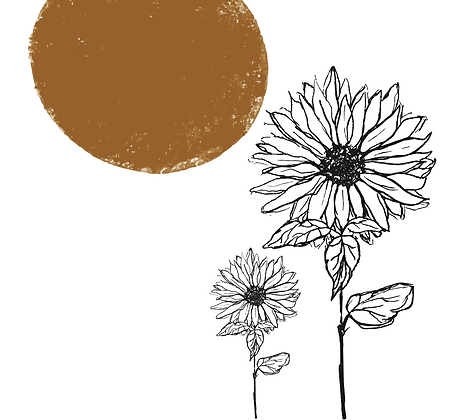 Illustratie sunflower