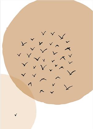 Illustratie free birds