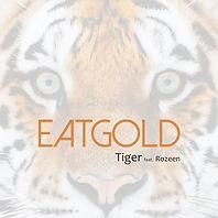 tiger_cover.jpg