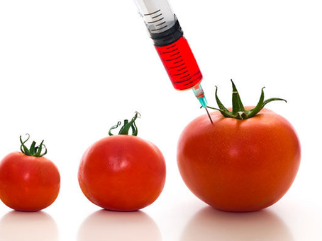 The Ethical Implications of Genetically Modified Organisms (GMOs)