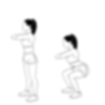 bodyweight squat.png