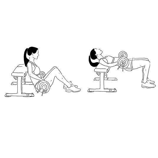 barbell hip thrust.png