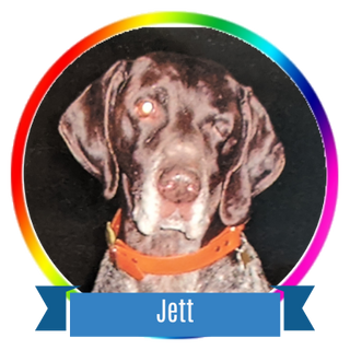 Jett Icon.png