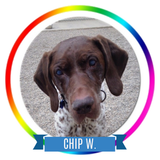 Chip W Memorial Icon.png