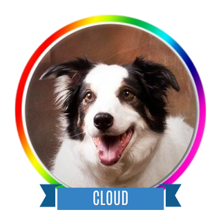 Cloud Memorial Page Icon.png