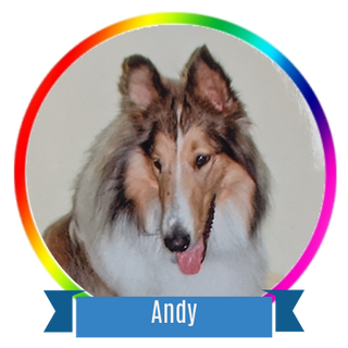 Andy Icon.png
