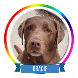 Gracie H.png