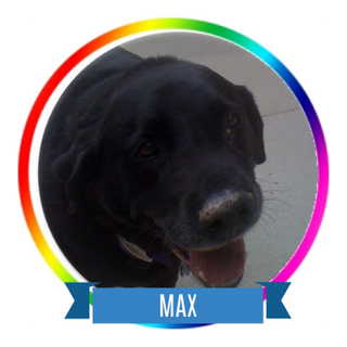 Max Icon.png