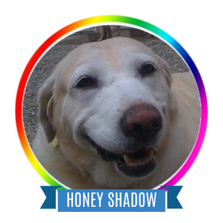 Honey Shadow Memorial Page Icon.png
