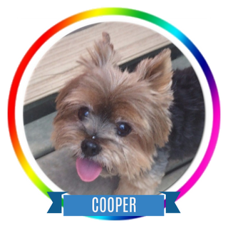 Cooper K Memorial Page Icon.png