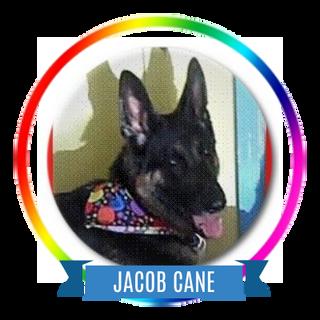 Jacob Cane.png