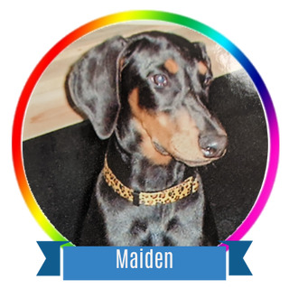 Maiden Icon.png