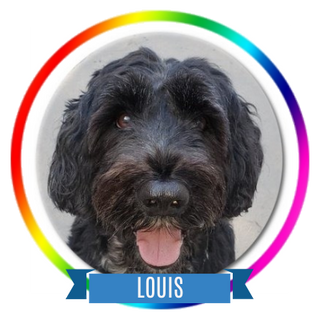 Louis Memorial Page Icon.png