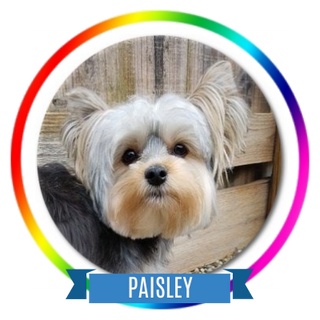 Paisley Memorial Page Icon.png