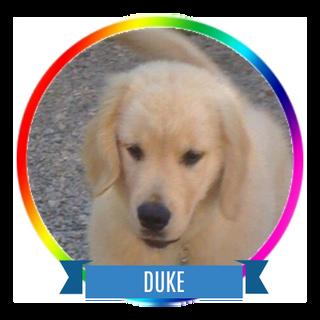Duke Icon.png