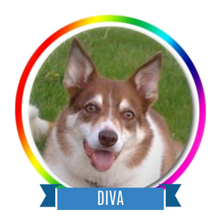 Diva Memorial Page Icon.png