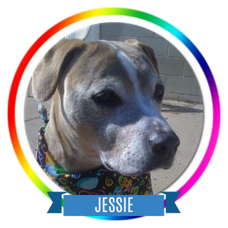 Jessie Memorial Page Icon.png