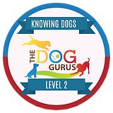 Knowing Dogs Level 2 Badge.png