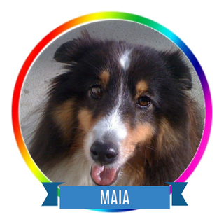 Maia Icon.png