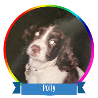 Polly Icon.png