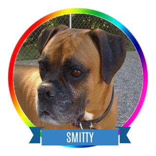 Smitty Icon.png