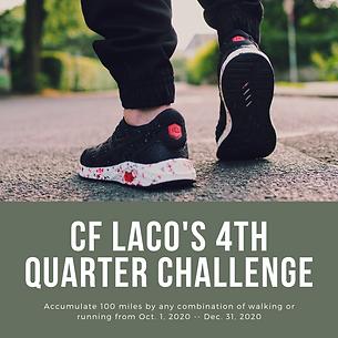 100 mile Challenge.png