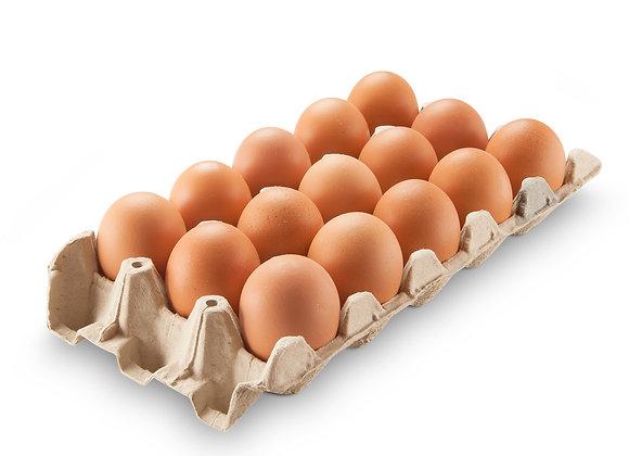Huevos Extra Grande Color  Nro. 1 x 15