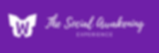 Purple banner_W 1500x500.png