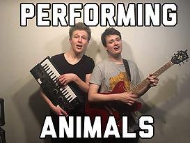 Animals.jpeg