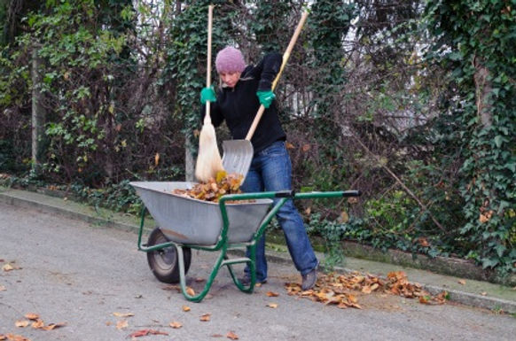 Make money from your spring cleaned garden