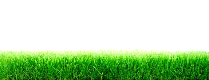 Farming blog: Reseeding – how and when