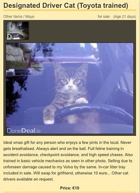 Designated Driver…..with a difference!