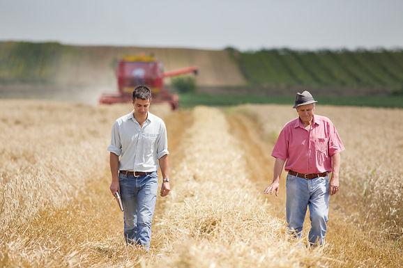 Family Farm Succession