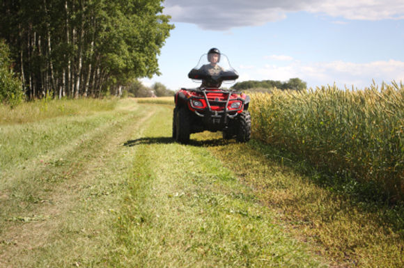 DoneDeal's guide to buying your child a quad bike