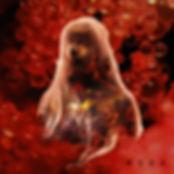 MSEANewsAlbum.jpg