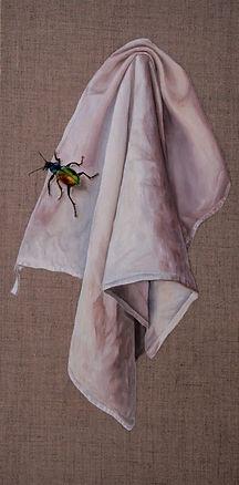 Torchon_à_l'insecte_20X60.jpg