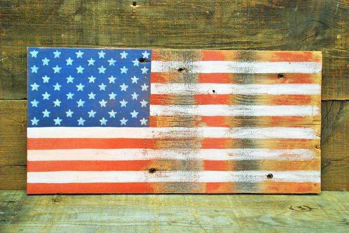American Flag #67
